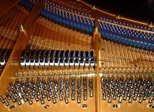 Bluthner 'Aliquot' piano stringing
